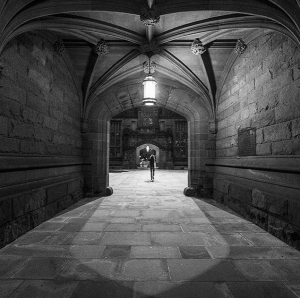 princeton-university_ffolkes